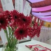 Čarobno vjenčanje u rozom